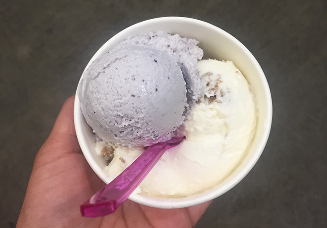 Scoops brown bread and blueberry lavender ice cream