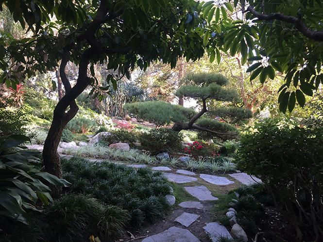 Self Realization Center garden in San Rafael