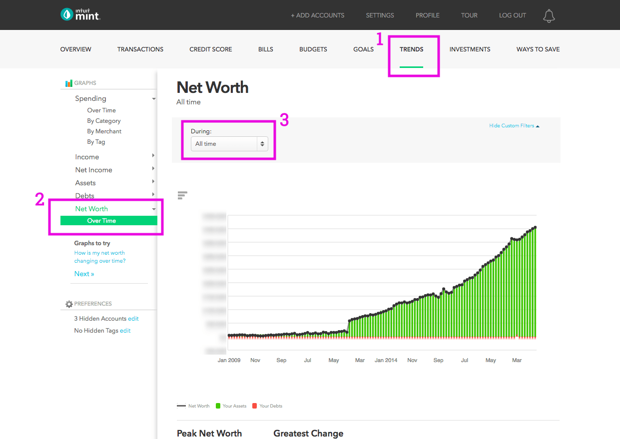 How to check net worth in Mint
