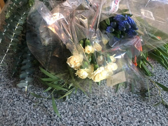 Trader Joe's spring flowers