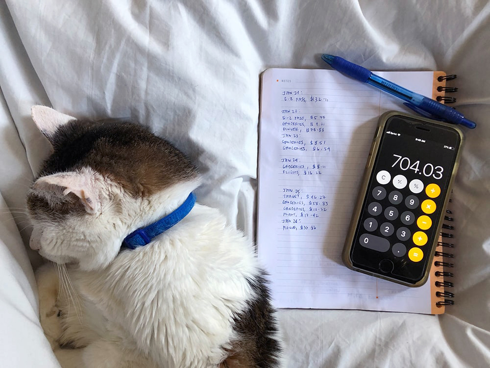 Tracking Spending with a Notebook (and Cat)