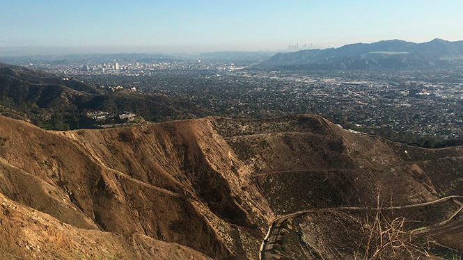 Money Diary: Four Days in Los Angeles