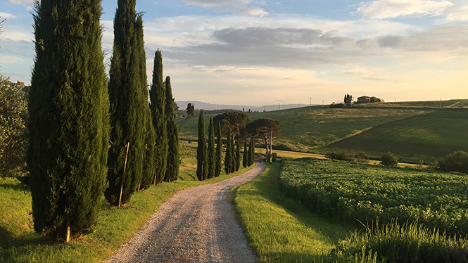 Cost Breakdown: A Two-Week Roadtrip Through Tuscany, Italy